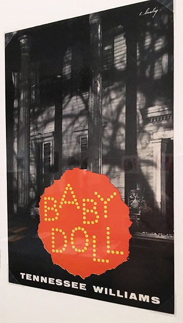 Babydoll Book Cover by Elaine Lustig Cohen